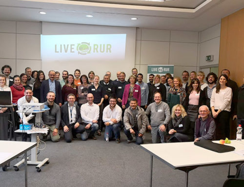 The H2020 project LIVERUR continues to develop sustainable alternatives for the SMEs in rural areas across Europe, Asia and Africa