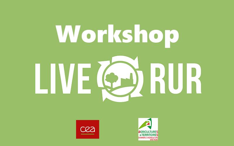 liverur_workshop