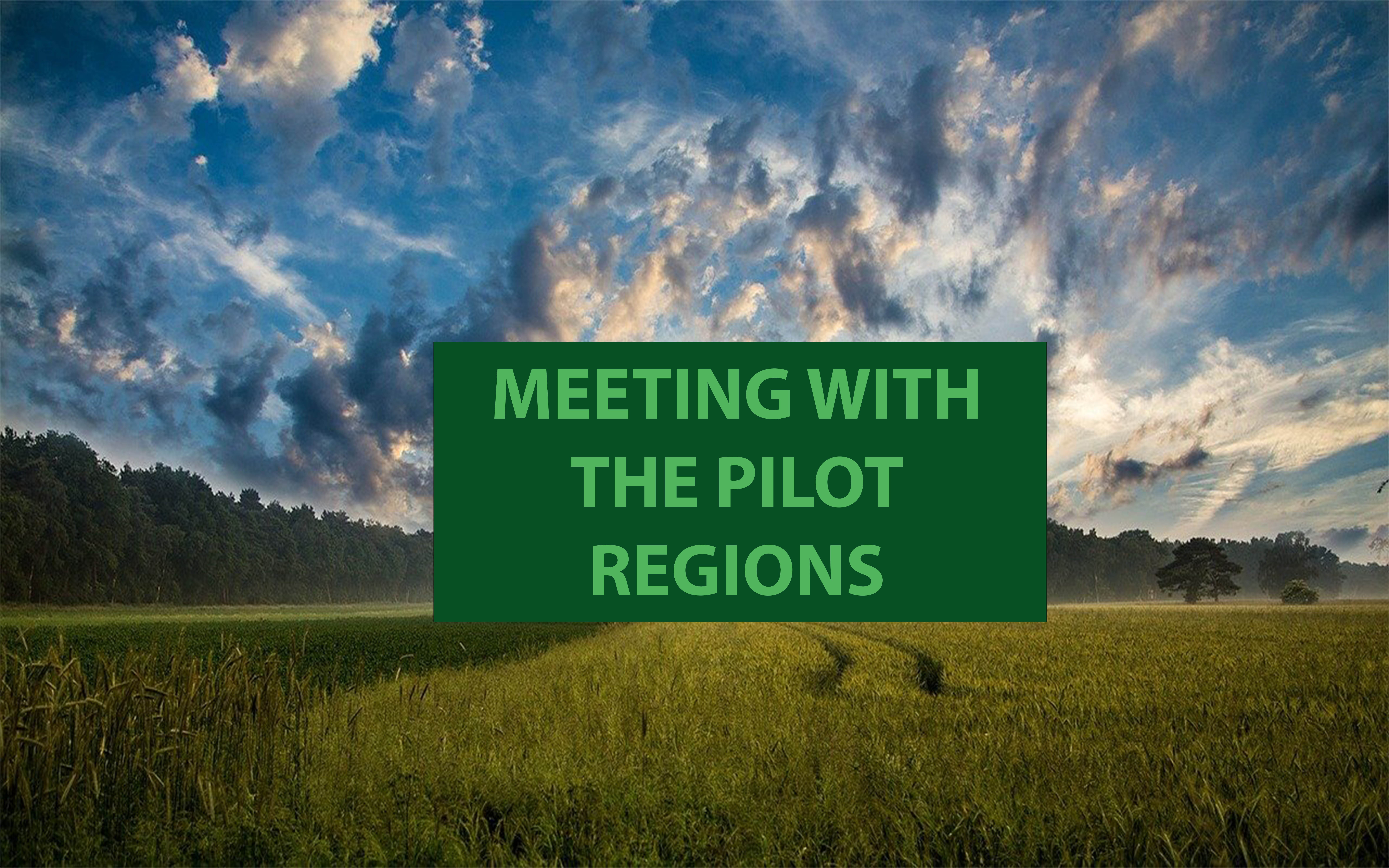 Meeting pilot regions